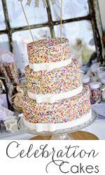 Ashlee-Marie-Cakes_Celebration-Cakes